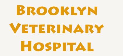 Brooklyn-Veterinary-Hospital