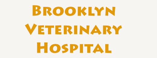 Brooklyn-Veterinary-Hospital